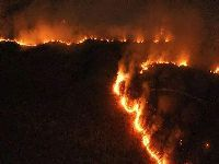 Incêndios na Amazônia: