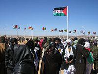 Activista portuguesa expulsa do Sahara Ocidental  regressa amanhã a Lisboa. 21701.jpeg