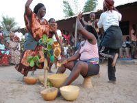 Quem não deseja a estabilidade na Guiné-Bissau?. 17704.jpeg