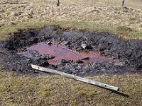 Queda no preço do petróleo e os interesses dos Estados Unidos. 22713.jpeg
