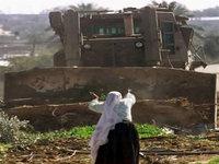 Militares e colonos israelitas destroem culturas palestinianas
