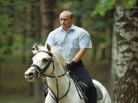 Vladimir Putin participou na sessão plenária do Fórum Económico Oriental. 31718.jpeg