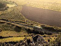 Os Verdes Querem a Modernização da Linha Ferroviária do Oeste. 28724.jpeg