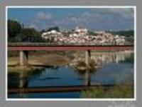 Ponte em Constância: Verdes preocupados