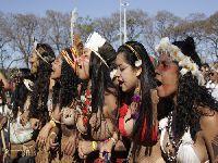 Organizações de Mulheres Indígenas no Brasil: resistência e protagonismo. 33748.jpeg