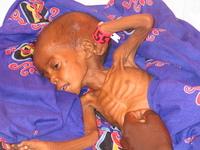Darfur: Refugiados continuam a fugir