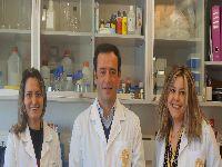 Cientistas da UC descobrem que o consumo continuado de mirtilo tem um forte impacto no fígado. 34752.jpeg