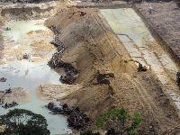 Governo Temer altera Unidades de Conservação e fragiliza proteção à floresta no Pará. 25753.jpeg