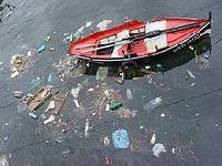 Lixo de feira alimenta famílias de desempregados no Sudeste do País. 24754.jpeg