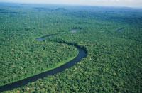 Brasil lança plano para reduzir emissão de CO2 e preservar a natureza