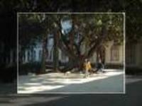 Lisboa: 150 anos do Museu Nacional de História Natural