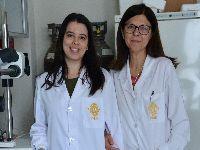 Investigadores da UC desenvolvem pâncreas bioartificial para tratar a Diabetes. 24780.jpeg