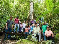 'Estamos lutando pelo mesmo sonho: fazer florestas'. 30830.jpeg