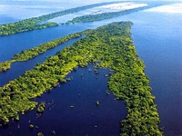 Critérios ambientais definem crédito agrícola na Amazônia