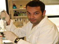 Equipa da Universidade de Coimbra perspetiva tratamentos inovadores. 22843.jpeg