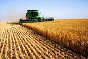 Irã lança primeiro plano para agricultura no Exterior. 22851.jpeg