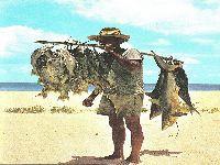 Sesimbra distingue pescador há mais anos em actividade. 28865.jpeg