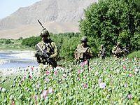 RAWA sobre Crimes de Guerra dos EUA no Afeganistão. 25866.jpeg