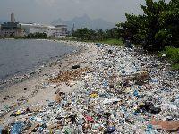 Degradação ambiental: População sente o impacto na qualidade de vida. 24868.jpeg