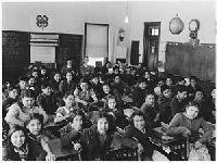Verdes: Ensino à Distância/Acompanhamento de Filhos Menores. 34871.jpeg