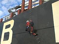 Ativistas de Greenpeace invadem navio vindo do Brasil com destino à UE