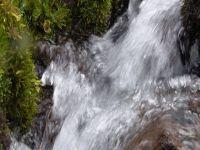 A qualidade da água nossa de cada dia. 30873.jpeg
