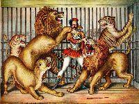 Os Verdes reapresentam o seu projeto para travar o uso de animais em Circos. 27875.jpeg
