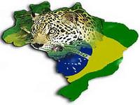 Nova lei fundiária da Amazônia é inspirada na colonização africana