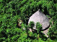Ex-coordenadores criticam exoneração arbitrária de responsável por indígenas isolados na Funai. 31880.jpeg