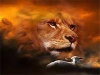 Quando os cordeiros domam os leões