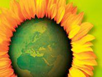 """8 de Setembro - Partido Ecologista """"Os Verdes"""" debate cultura em Setúbal. 22888.jpeg"""