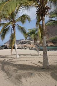 Tribunal de Contas de Portugal vai ajudar o seu homólogo de Cabo Verde