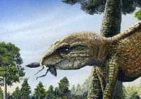 Paleontólogos bresileiros descobriram uma nóva espécie de crocodilo