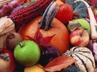 Brasil: Análise da Produção Agrícola