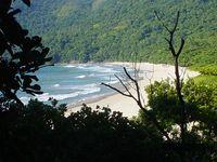 Paraty é a primeira cidade do mundo a implementar o Passaporte Verde