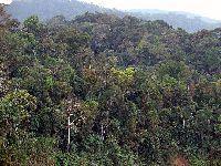 Semana do Meio Ambiente 2018 - Ecologia Integral Diocese de Umuarama. 28900.jpeg