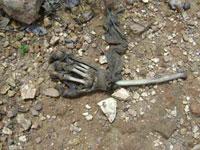 Ossadas humanas encontradas por policiais no Nova Teresina
