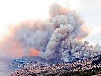 Deputado Ecologista e dirigentes de Os Verdes deslocam-se à Madeira. 24915.jpeg