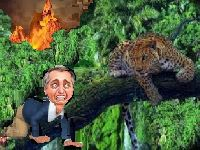 Amazônia Legal: patrimônio legalmente brasileiro a serviço da humanidade. 33928.jpeg