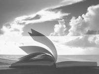 O livro e o tempo