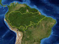 Desmatamento na Amazônia, o