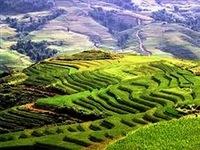 Brasil e Vietnã firmam acordo de cooperação científica e de combate à fome
