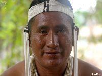 Em meio a pandemia, indígenas do Javari denunciam ameaça de missionários a isolados. 32947.jpeg