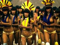 Experiências de conservação na Bacia do Xingu serão exibidas em feira no Mato Grosso
