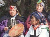 Relator da ONU emite comunicado sobre greve de fome de indígenas Mapuche no Chile