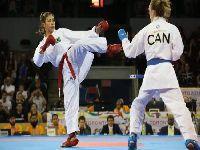 Seminário vai preparar praticantes para a nova modalidade olímpica: o Caratê. 24964.jpeg