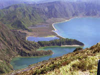 Os Verdes nos Açores