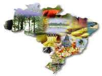 Turismo: Atrair chineses ao Brasil