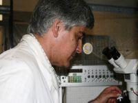 Estudo Internacional revela novas pistas para a origem da Esquizofrenia. 21988.jpeg