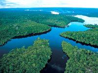 Amazonas: A morte anunciada de uma floresta